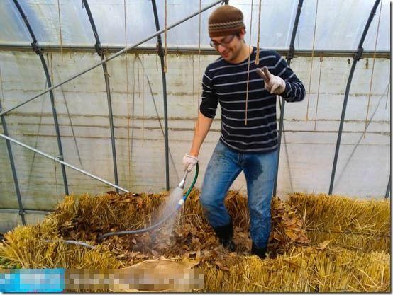 温床の作り方