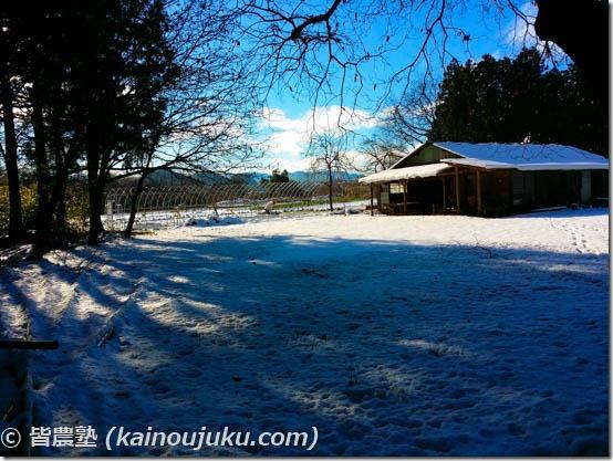 自然のホットカーペット|温床の作り方