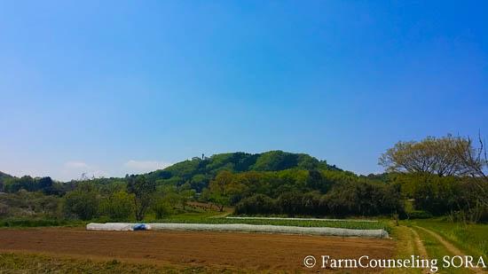 2016年の米づくりがはじまります。